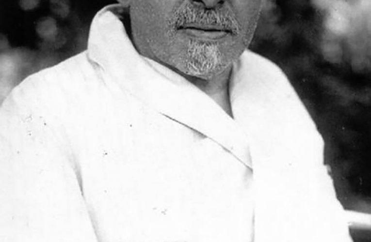 Дмитрий Ильич Ульянов, нарком, большевик и брат